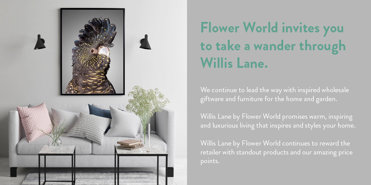 Welcome image - take a wander through Willis Lane